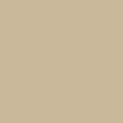 Colorbond Paperbark